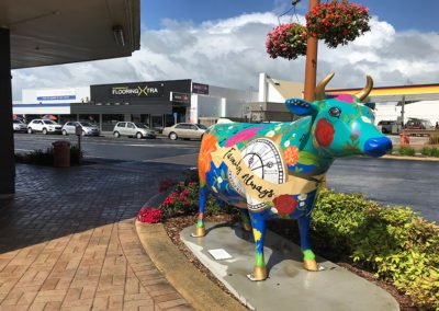 Painted-Cow-Morrinsville